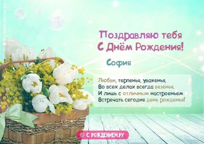 Открытки с Днём Рождения с именем София