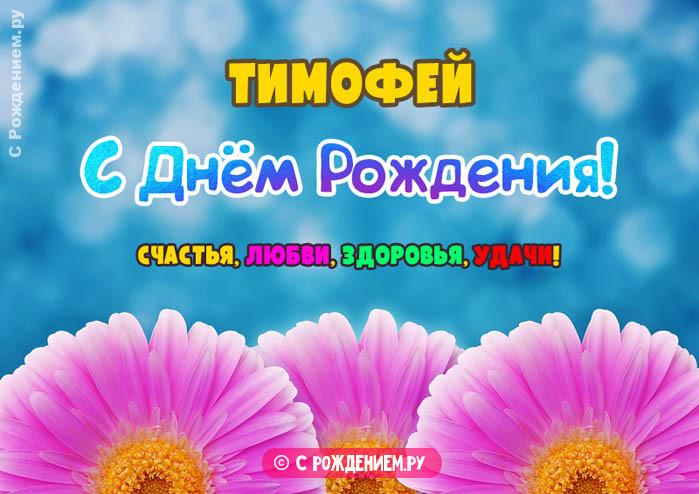 Открытки с Днём Рождения с именем Тимофей